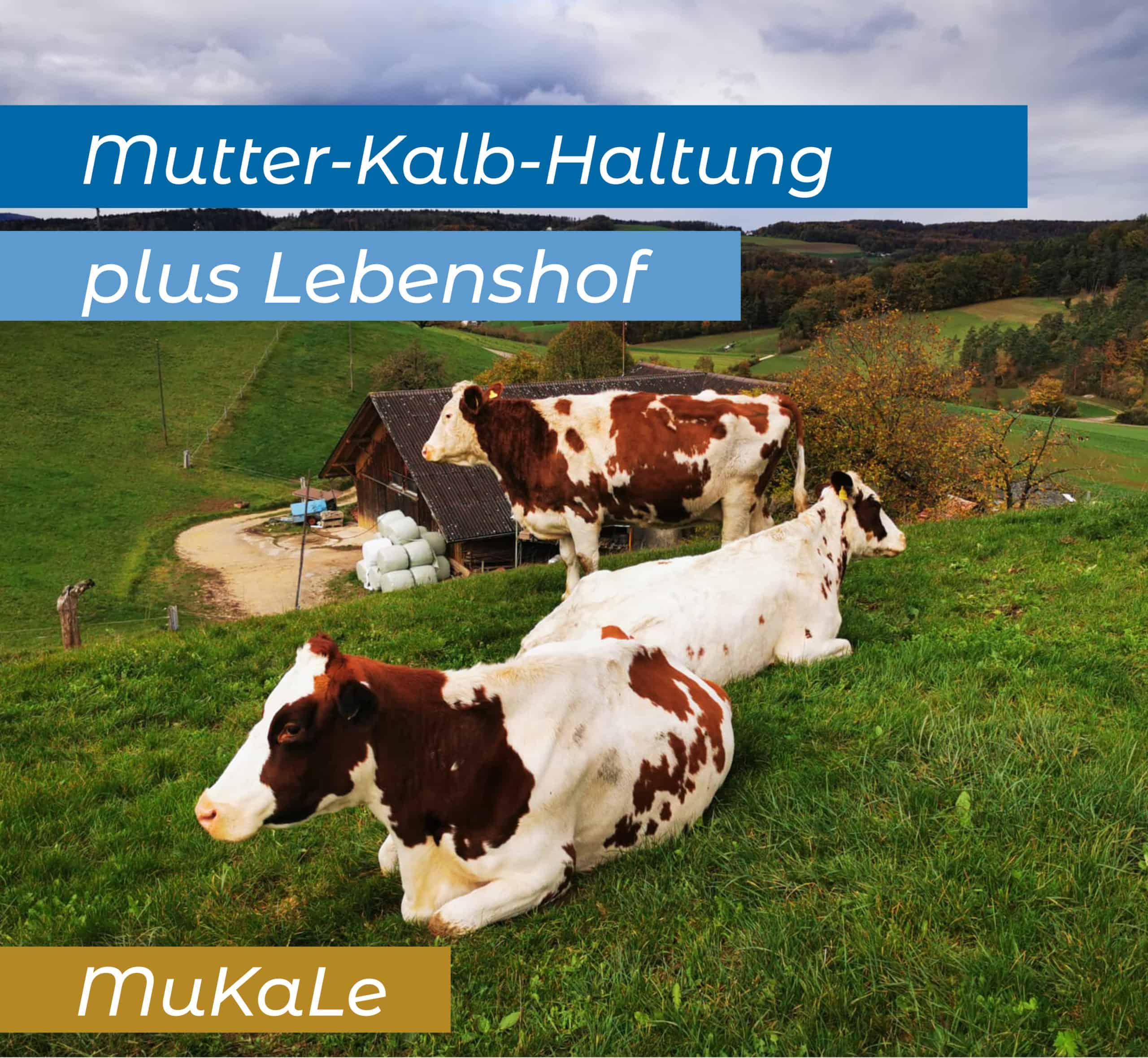 Lebenshof MuKaLe